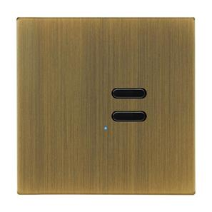 Wise Switch 2 Channel Antique Brass 3V