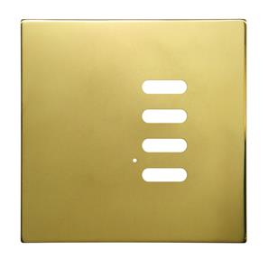 Wise Intense Polished Brass Plate