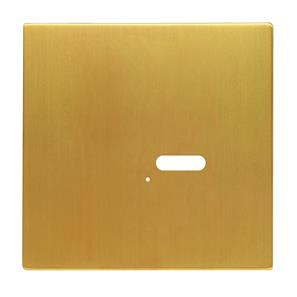 Wise Intense Satin Brass Plate