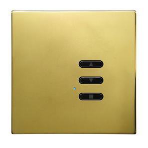 Wise Fusion Dimmer Slave Wireless 1 Gang Polished Brass 3V
