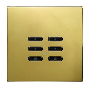 Wise Fusion Dimmer Slave Wireless 2 Gang Polished Brass 3V
