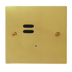Wise ID Switch Polished Brass 2 Channel