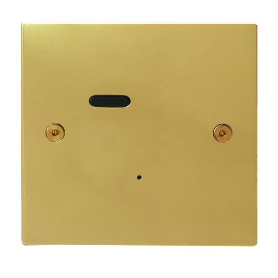 Wise ID Switch Polished Brass 1 Channel